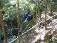 ADK_Leaves_n_Waterfalls_088.jpg